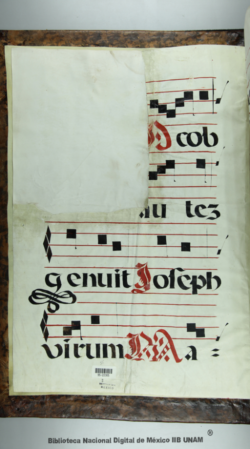 Imagen de Antiphonarius liber pro festis sancti Joseph, Virginis Perdolentis, boni latronis et sancti Jacobi